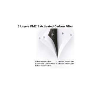 PM2.5 Filter - 10 pack